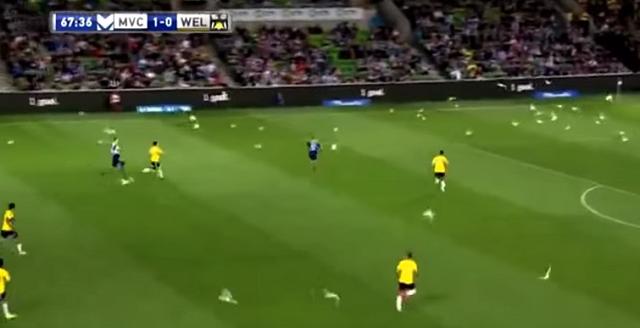 Invasione di gabbiani durante partita in Australia mentre attaccante segna!