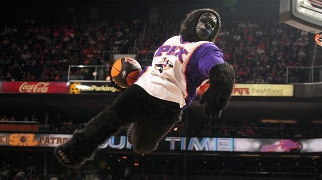 Go, gorilla-mascotte dei Phoenix Suns (NBA) nella Hall of Fame