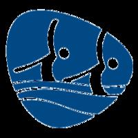 Rio 2016: il programma del nuoto sincronizzato