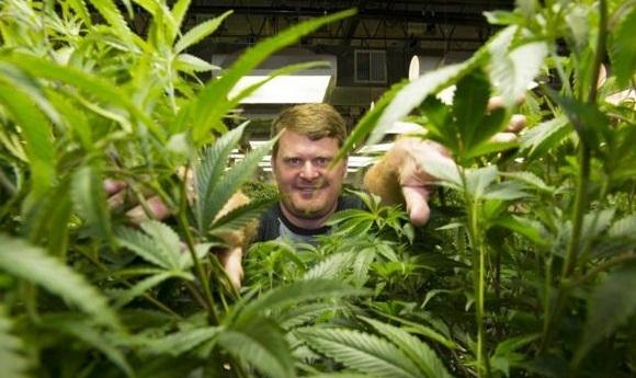 Floyd Landis: dal Tour (perso) al negozio di cannabis